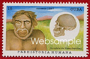 Neandertal reconstruction and skull.